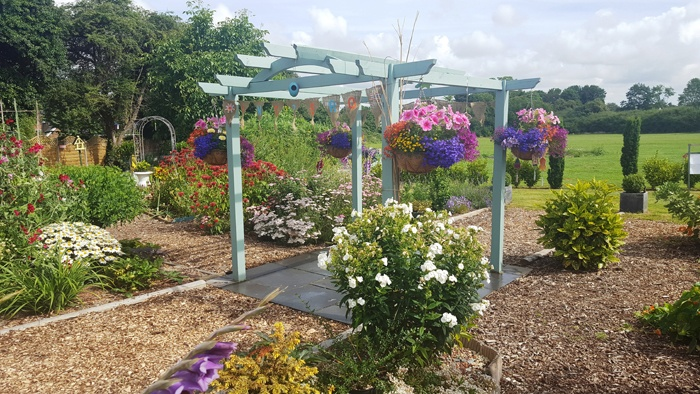 Inspero Community Garden in full bloom 2016
